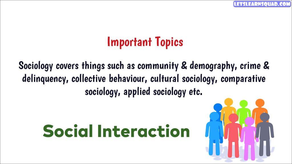 B.a Socioogy में करियर कैसे बनाएं?